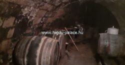 Eladó domboldali panorámás családi ház Tokajban, borozóval, borfeldolgozóval, pincével, vendégházzal